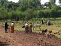 2010-1108-002-bahirdar